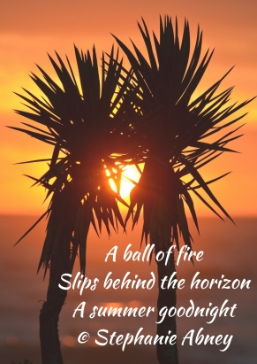 A ball of fireSlips behind the horizonA summer goodnight© Stephanie Abney